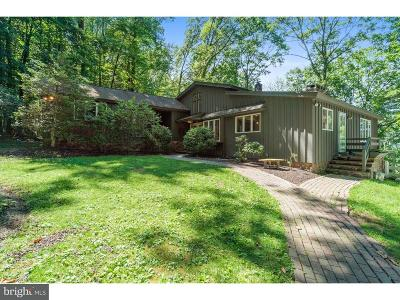 Solebury Single Family Home For Sale: 13 High Road