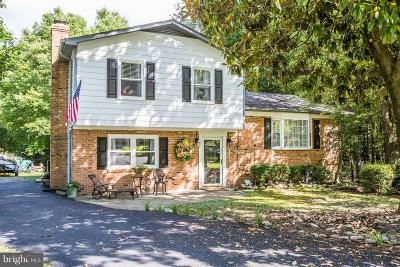 Fredericksburg Single Family Home For Sale: 3 Mickey Court