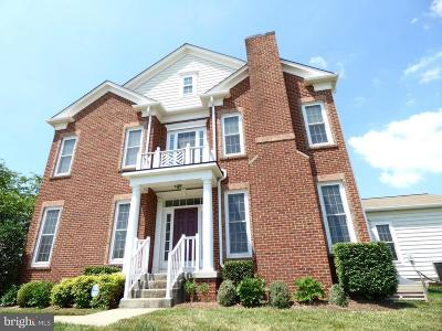 Leesburg Townhouse For Sale: 20769 Red Cedar Drive