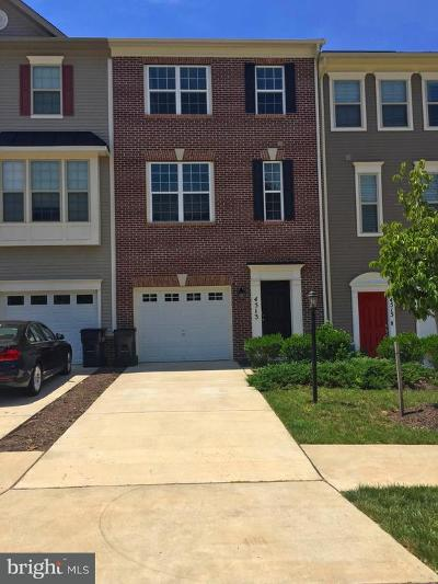 Triangle Townhouse For Sale: 4513 Potomac Highlands Circle S #4513