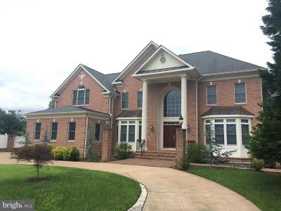 Annandale Single Family Home For Sale: 7381 Rodeo Court