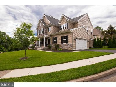 Delaware County Single Family Home For Sale: 1400 Parkside Drive