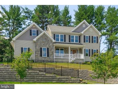 Newtown Square Single Family Home For Sale: 12 Knights Way