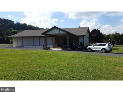 Bucks County Single Family Home For Sale: 987 River Road
