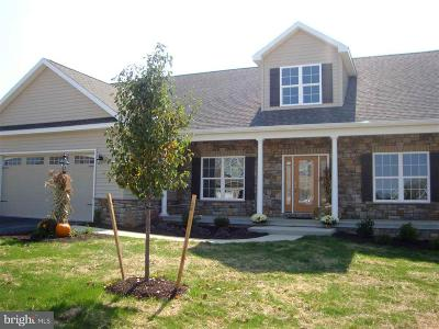 Camp Hill, Mechanicsburg Single Family Home For Sale: 841 Tamanini Way