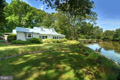 Chestertown Single Family Home For Sale: 6100 Pine Acres Road