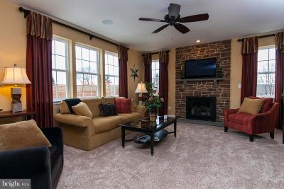 Reisterstown Single Family Home For Sale: 45 Stocksdale Avenue E