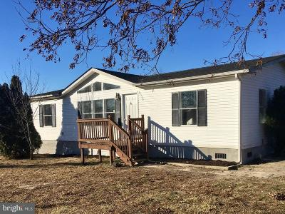 Caroline County Single Family Home For Sale: 17114 Liberty Fork Road