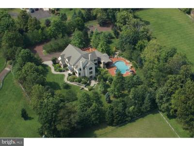 Buckingham Single Family Home For Sale: 4812 Church Road