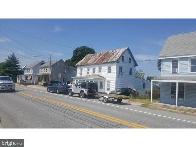 Dover Single Family Home For Sale: 294 Main Street