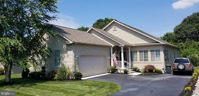 Milford Single Family Home For Sale: 17 Little Birch Drive
