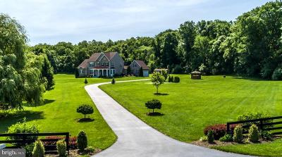 Frederick County Single Family Home For Sale: 451 Crispin Trail