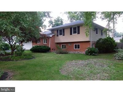 Bucks County Single Family Home For Sale: 30 S Homestead Drive