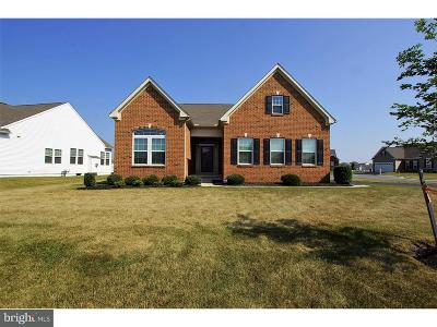 Smyrna Single Family Home For Sale: 291 Red Maple Road