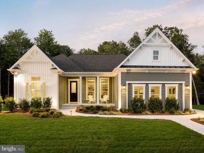Selbyville Single Family Home For Sale: 30074 Sanctuary Drive