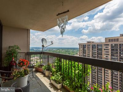 Annandale, Falls Church Condo For Sale: 3701 George Mason Drive #2501N