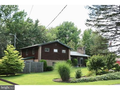 Smyrna Single Family Home For Sale: 1126 Massey Church Road