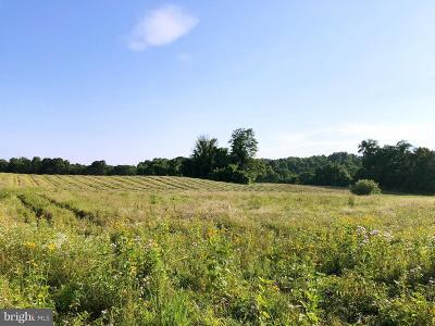 Purcellville Residential Lots & Land For Sale: 35679 Paxson Road