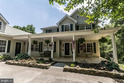 Frederick County Single Family Home For Sale: 393 Saddleback Lane