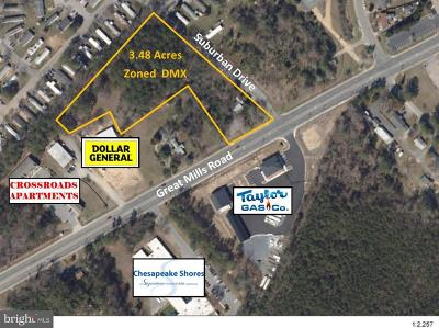 Anne Arundel County, Calvert County, Charles County, Prince Georges County, Saint Marys County Commercial For Sale: 21437 Great Mills Road