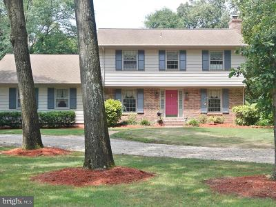 Seaford Single Family Home For Sale: 9821 N Shore Drive