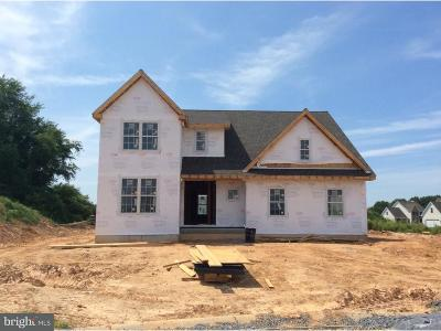 Delaware County Single Family Home For Sale: 355 S New Middletown Road #LOT 2