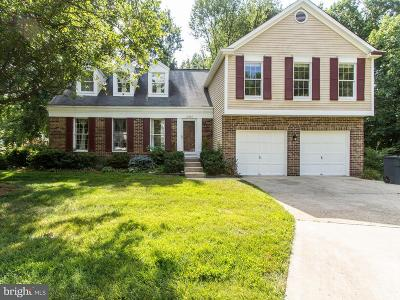 Silver Spring Single Family Home For Sale: 12404 Olivewood Place