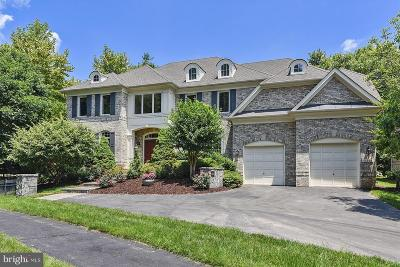 Reston Single Family Home For Sale: 11114 Chessington Place