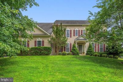 Fauquier County Single Family Home For Sale: 6289 Redwinged Blackbird Drive