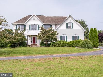 Purcellville Single Family Home For Sale: 19149 Pintail Court