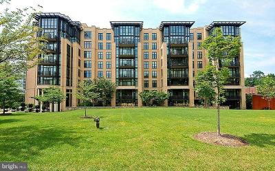Washington Condo For Sale: 4301 Military Road NW #414