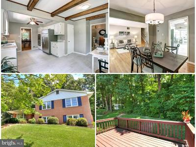 Annandale Single Family Home For Sale: 8007 Garlot Drive