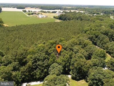 Residential Lots & Land For Sale: 18768 Tennessee Walk #LOT 21