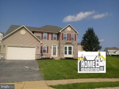 Spring Grove Single Family Home For Sale: 331 S Courtney Court