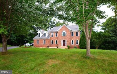 Manassas Single Family Home For Sale: 12853 Dusty Willow Road