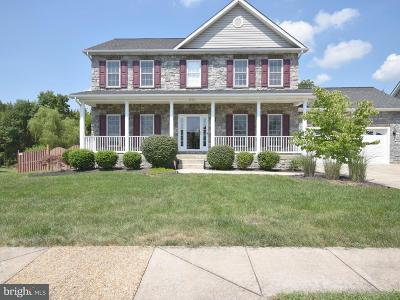 Shenandoah County Single Family Home For Sale: 644 Dellinger Drive