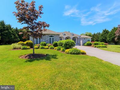 Lewes Single Family Home For Sale: 128 Williams Way