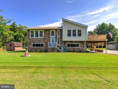 Single Family Home For Sale: 13669 Dickerson Lane