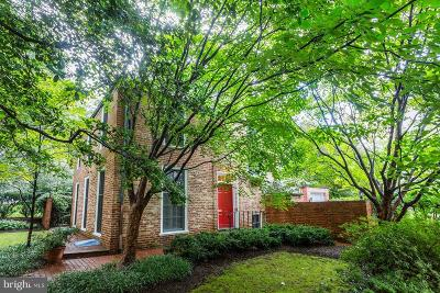 Chevy Chase Single Family Home For Sale: 3807 Blackthorn Street