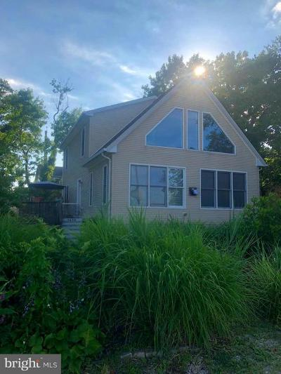 Edgewater Single Family Home For Sale: 3680 First Avenue