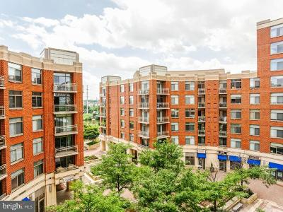 Arlington Condo For Sale: 3650 S Glebe Road #542