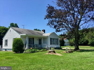Hagerstown Single Family Home For Sale: 12916 Salem Avenue