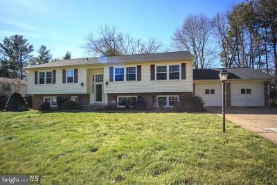 Vienna Single Family Home For Sale: 2534 Oak Valley Drive