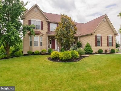 Single Family Home For Sale: 1012 Creekview Drive
