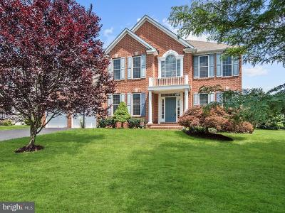 Carroll County Single Family Home For Sale: 1801 Kings Forest Trail