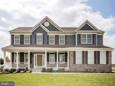 Milford Single Family Home For Sale: 30039 Stage Coach Circle