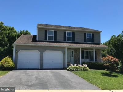 Sinking Spring Single Family Home For Sale: 222 Longview Drive