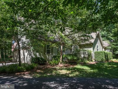 Locust Grove Single Family Home For Sale: 205 Antietam Drive