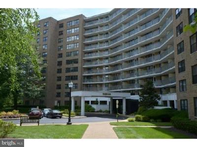 Penn Valley Condo For Sale: 1600 Hagys Ford Road #5B