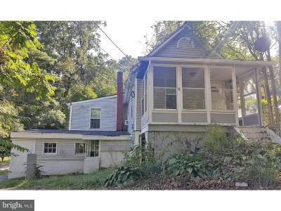 Chester County Single Family Home For Sale: 8 Jane Street